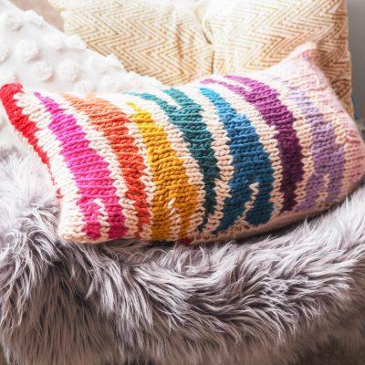 rainbow zebra print cushion